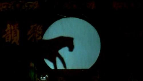 Hand Shadows - Horse