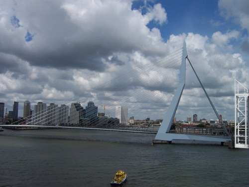 Erasmus Bridge - Rotterdam, Netherlands