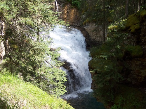 Medium Waterfall - Johnston Canyon