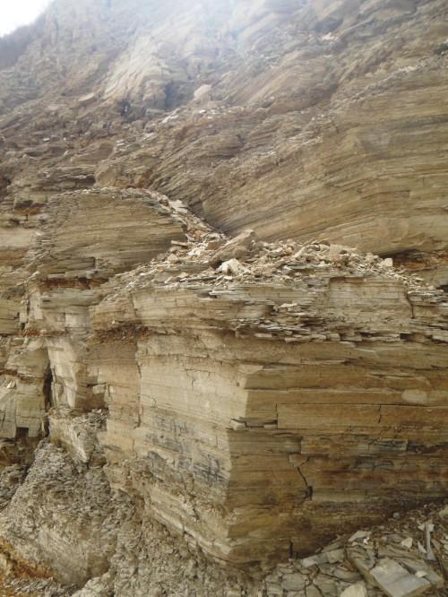 Lagerstätte - sedimentary deposit
