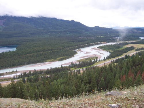Athabasca River flowing through Jasper