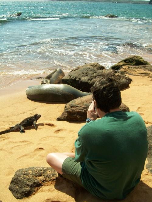 Juxtaposition - Galapagos Islands