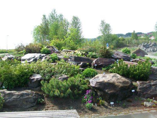 Arctic-alpine botanic garden - Tromso , Norway