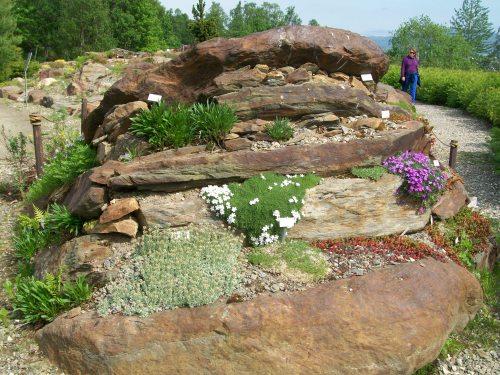 Arctic-alpine botanic garden